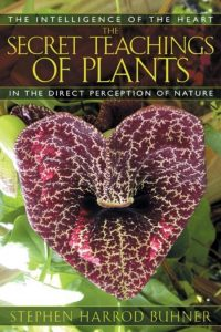 The Secret Teachings of Plants- food forest institute - foodforest - voedselbos - agroforestry