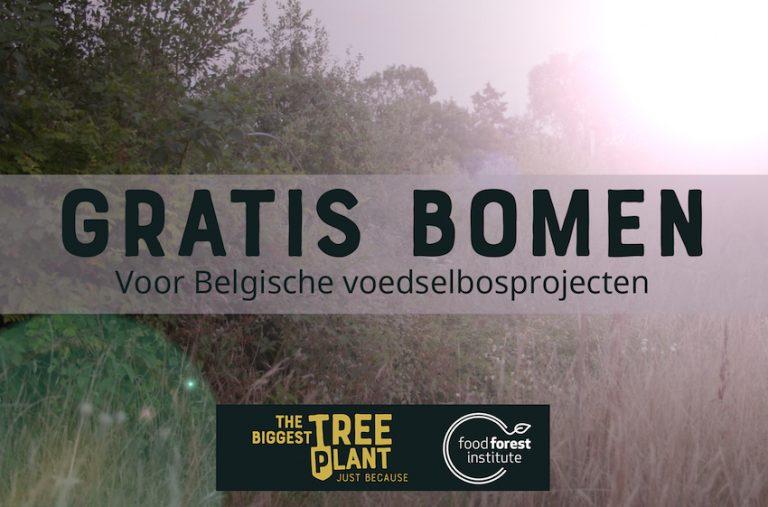 Gratis bomen voor voedselbossen